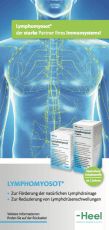 Lymphomyosot® Ratgeber Lymphsystem stärken
