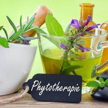 Phytotherapie Arzneimitteln aus Pflanzen