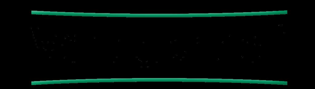 Vertigoheel Anwendung Schwindel