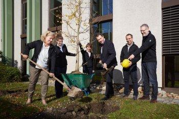 Ginkgo Baum Bepflanzung © Johannes Hloch